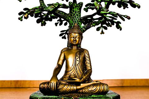 integraleyogaschiedam-h-yoga